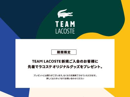 TEAM LACOSTE 新規入会キャンペーン