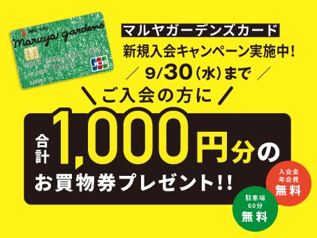 マルヤガーデンズカード 入会キャンペーン